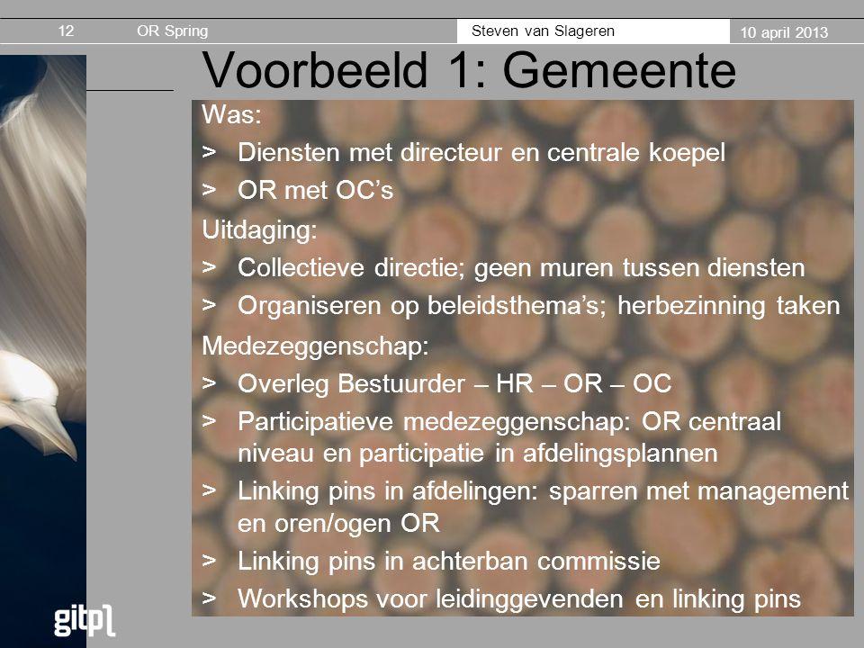 Voorbeeld 1: Gemeente Was: Diensten met directeur en centrale koepel
