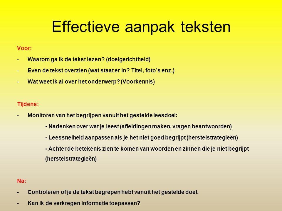 Effectieve aanpak teksten