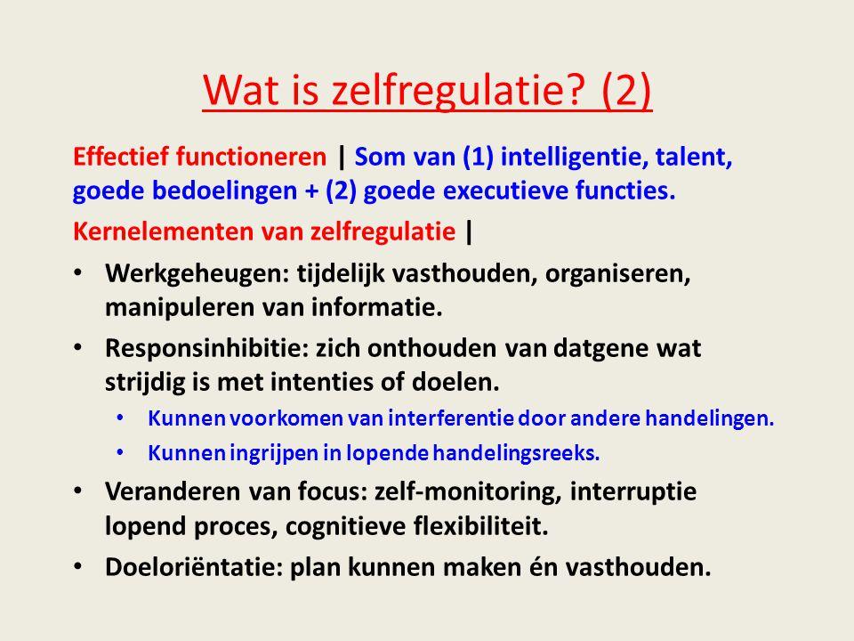 Wat is zelfregulatie (2)