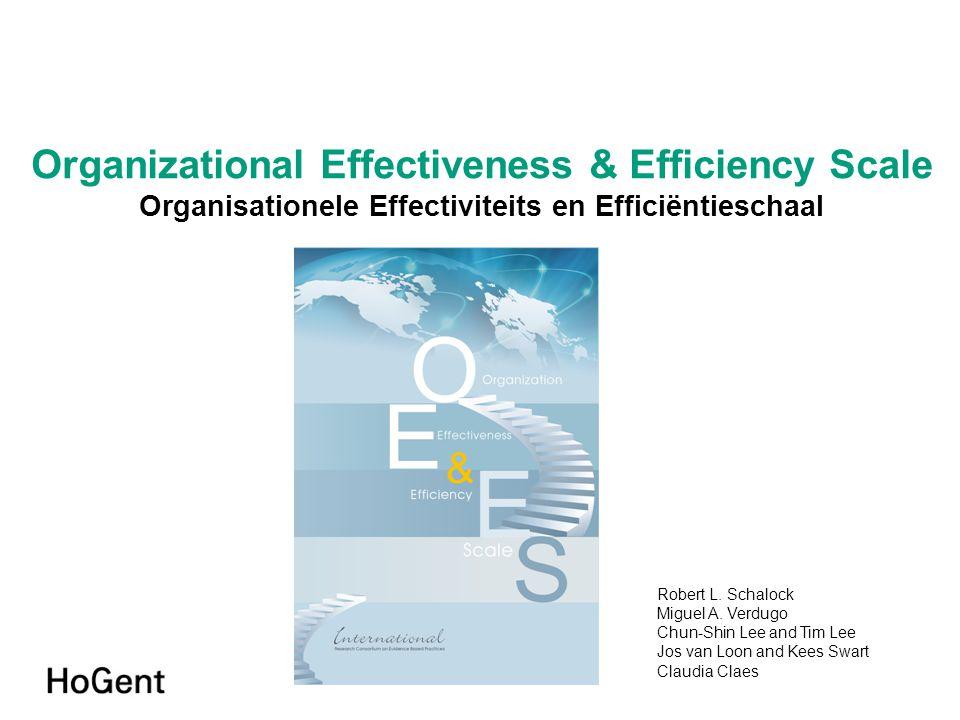 Organizational Effectiveness & Efficiency Scale