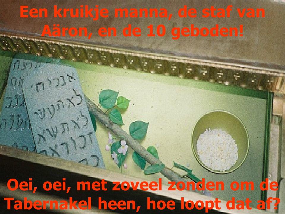 Een kruikje manna, de staf van Aäron, en de 10 geboden!