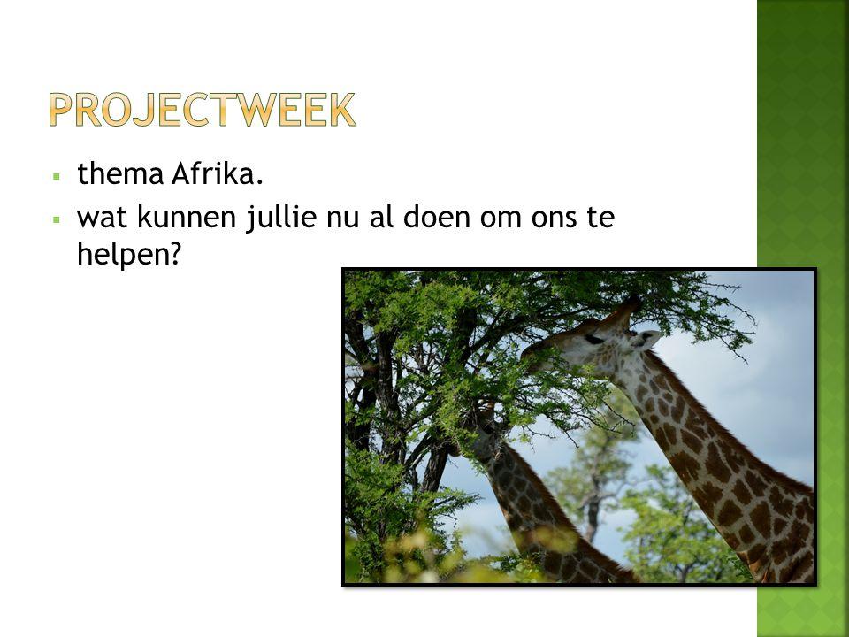 Projectweek thema Afrika.