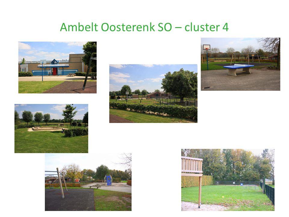 Ambelt Oosterenk SO – cluster 4