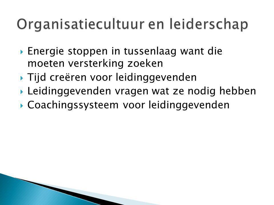 Organisatiecultuur en leiderschap
