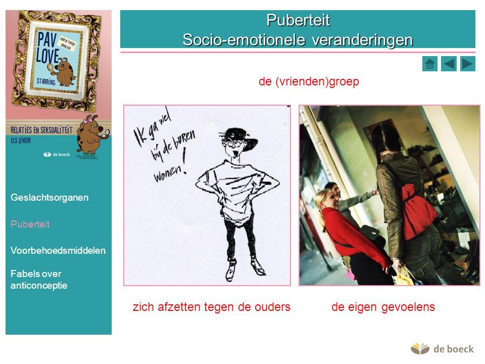 Puberteit Socio-emotionele veranderingen