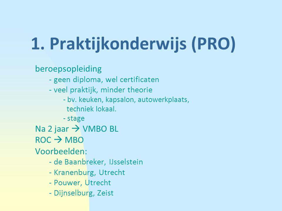 1. Praktijkonderwijs (PRO)