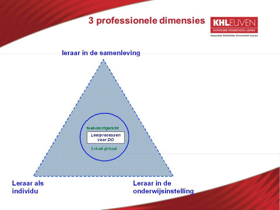 3 professionele dimensies