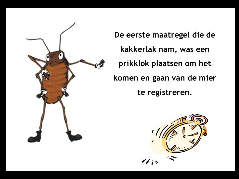 De eerste maatregel die de kakkerlak nam, was een prikklok plaatsen om het komen en gaan van de mier te registreren.