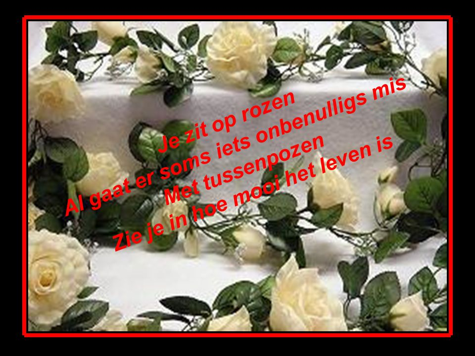 Je zit op rozen Al gaat er soms iets onbenulligs mis Met tussenpozen Zie je in hoe mooi het leven is