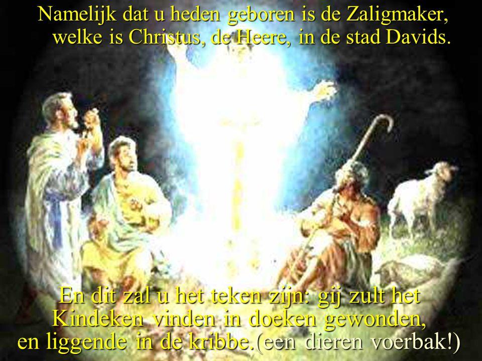 Namelijk dat u heden geboren is de Zaligmaker, welke is Christus, de Heere, in de stad Davids.