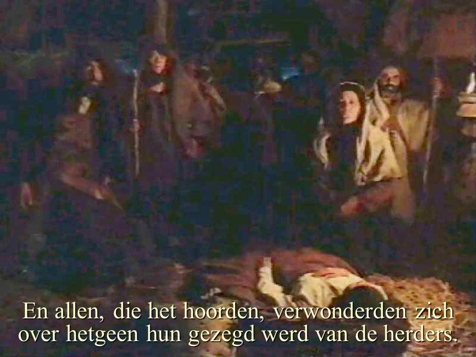 En allen, die het hoorden, verwonderden zich over hetgeen hun gezegd werd van de herders.