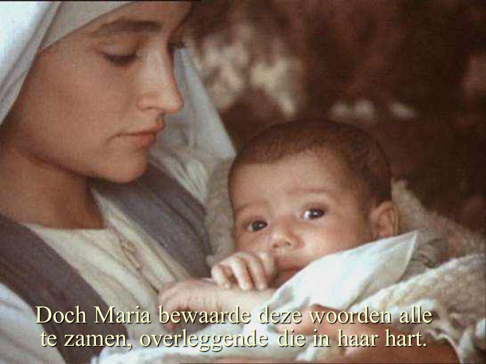 Doch Maria bewaarde deze woorden alle te zamen, overleggende die in haar hart.