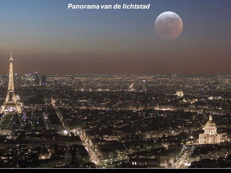 Panorama van de lichtstad