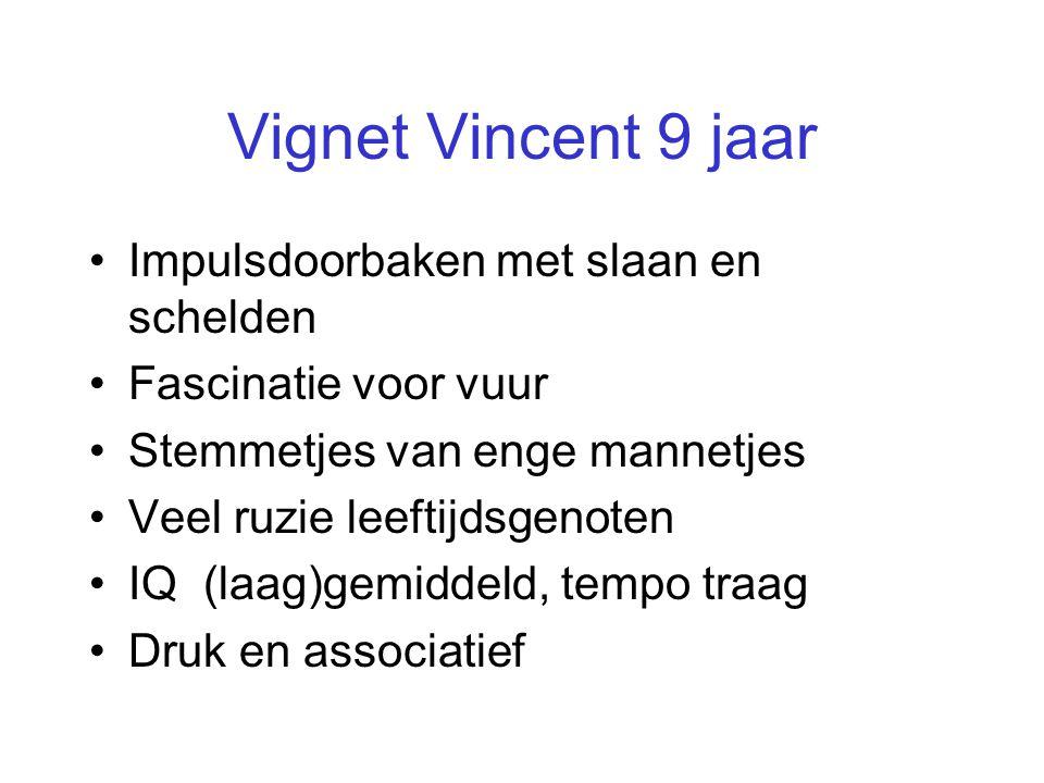 Vignet Vincent 9 jaar Impulsdoorbaken met slaan en schelden