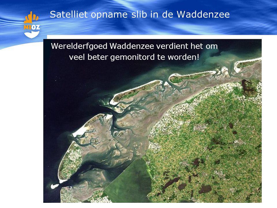 Satelliet opname slib in de Waddenzee