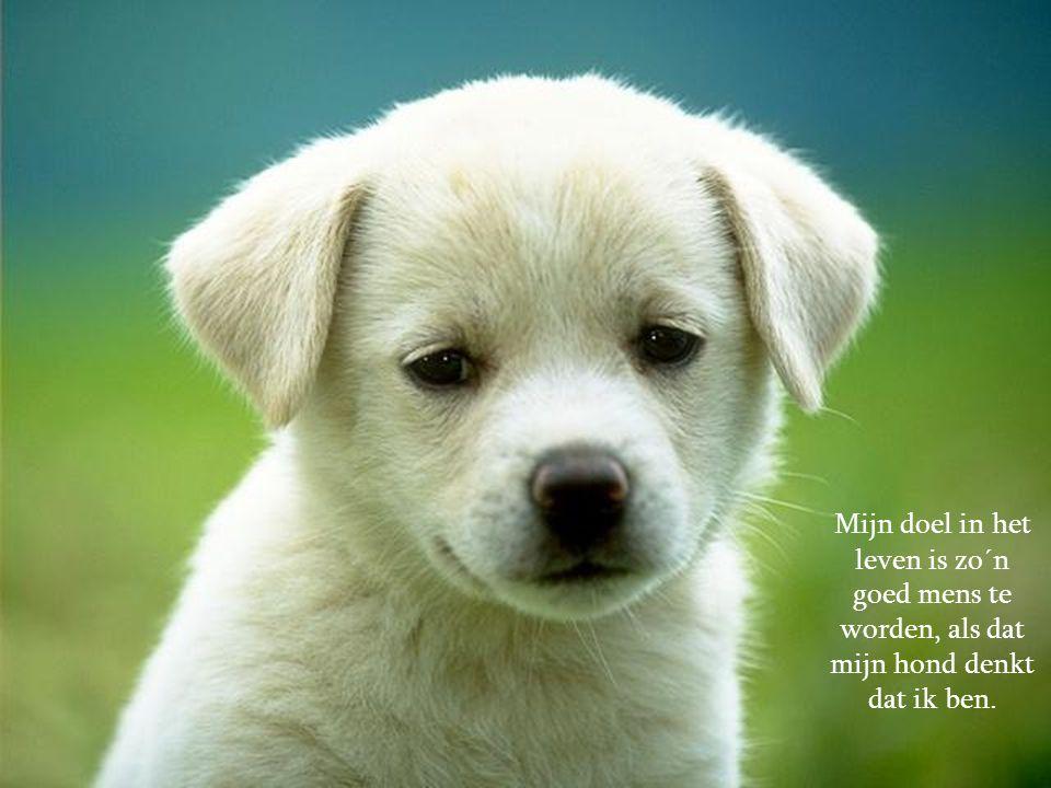 Mijn doel in het leven is zo´n goed mens te worden, als dat mijn hond denkt dat ik ben.