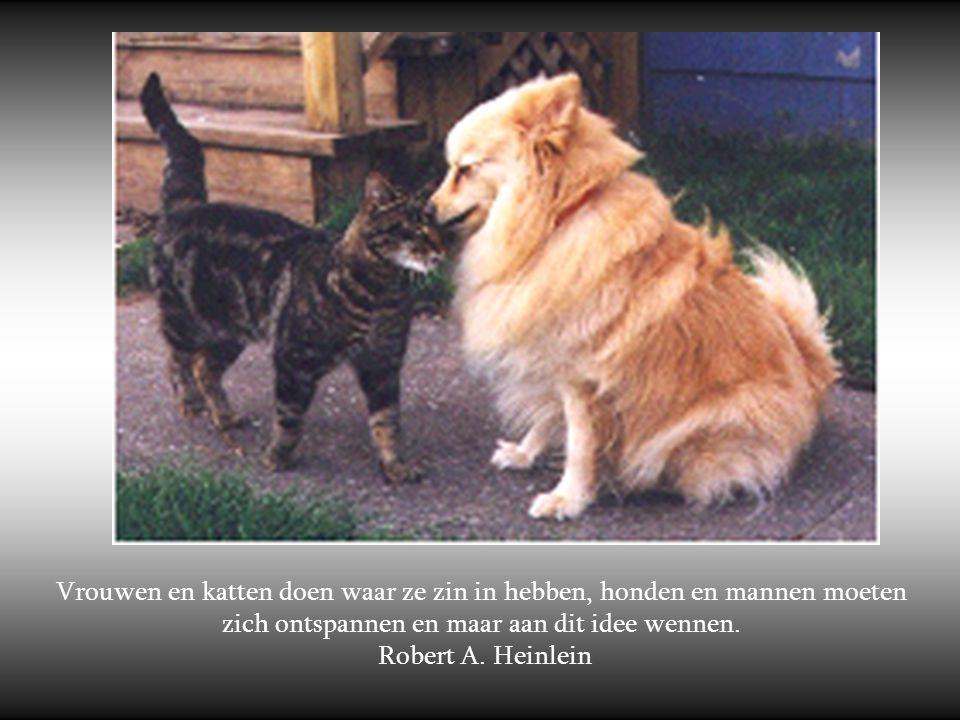 Vrouwen en katten doen waar ze zin in hebben, honden en mannen moeten zich ontspannen en maar aan dit idee wennen.
