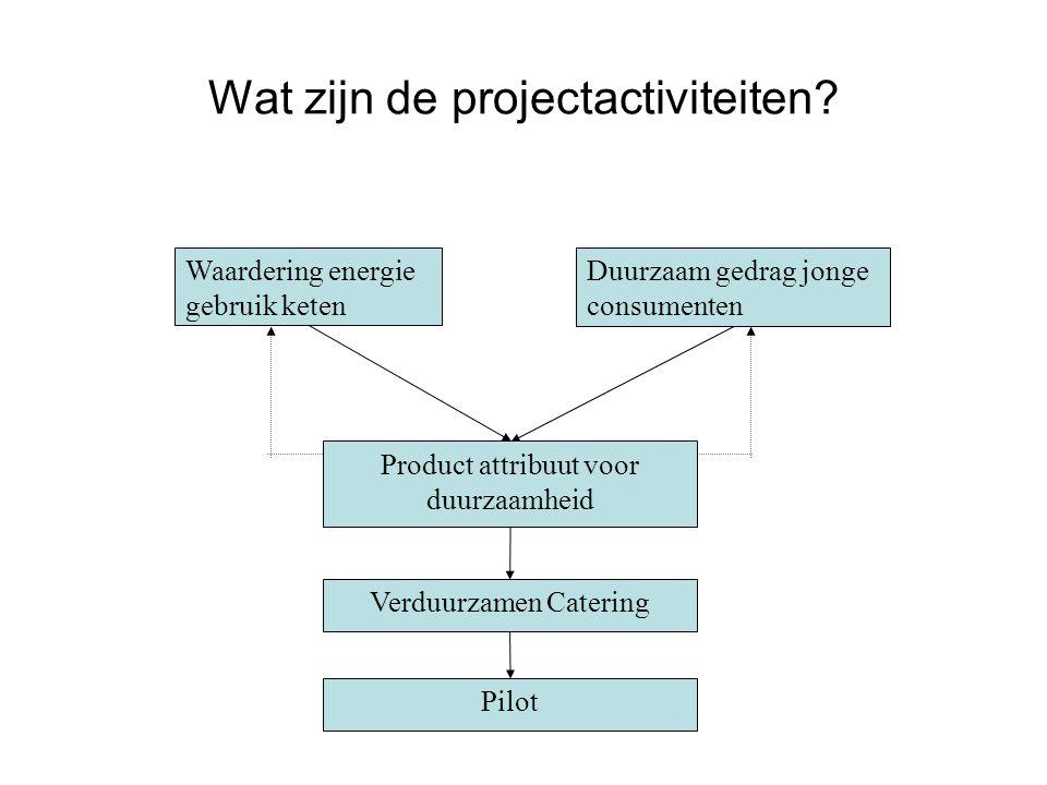 Wat zijn de projectactiviteiten