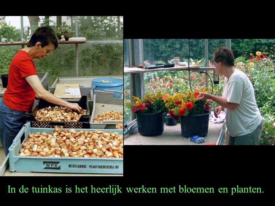 In de tuinkas is het heerlijk werken met bloemen en planten.