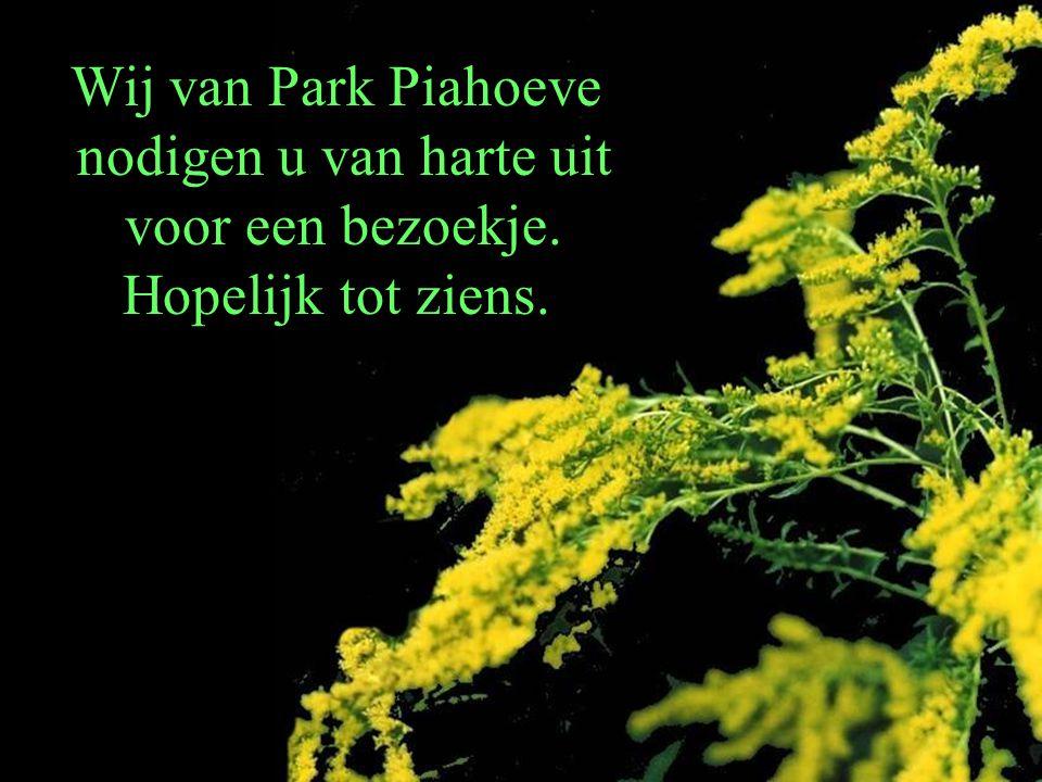 Wij van Park Piahoeve nodigen u van harte uit voor een bezoekje. Hopelijk tot ziens.