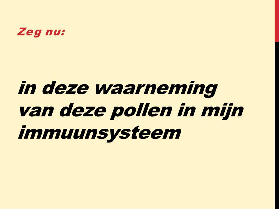 in deze waarneming van deze pollen in mijn immuunsysteem