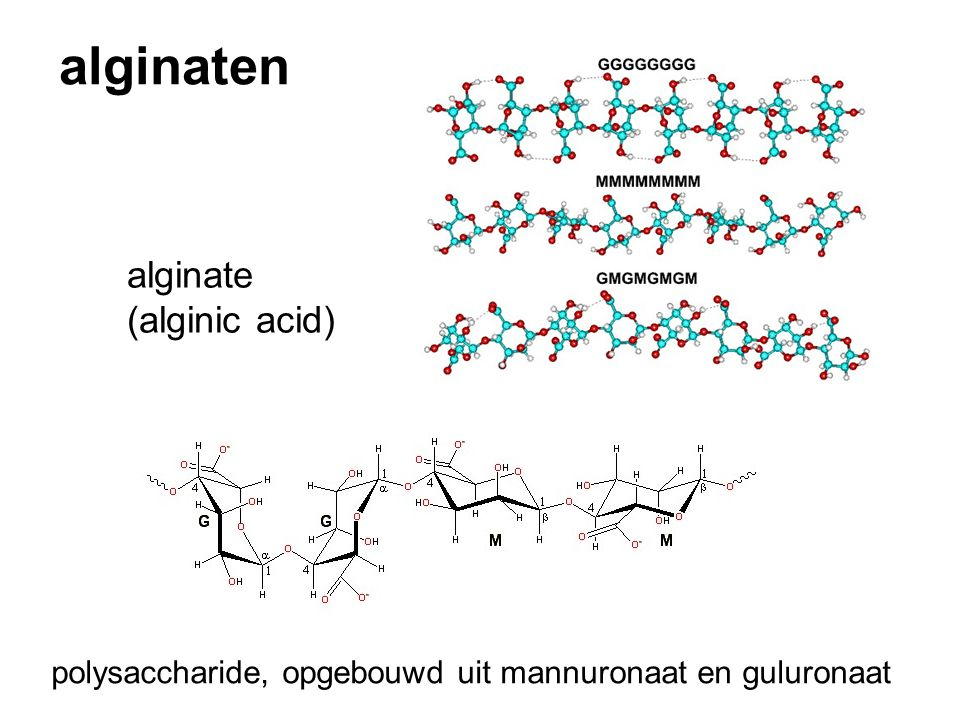 alginaten alginate (alginic acid)