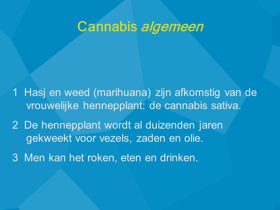 Cannabis algemeen 1 Hasj en weed (marihuana) zijn afkomstig van de vrouwelijke hennepplant: de cannabis sativa.