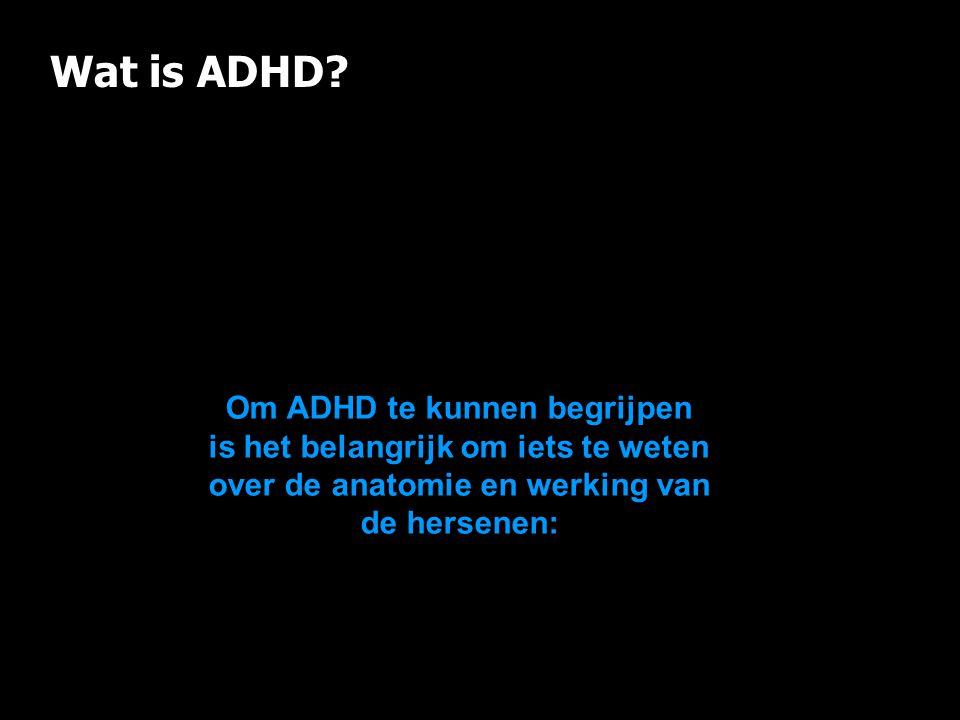 Wat is ADHD Om ADHD te kunnen begrijpen