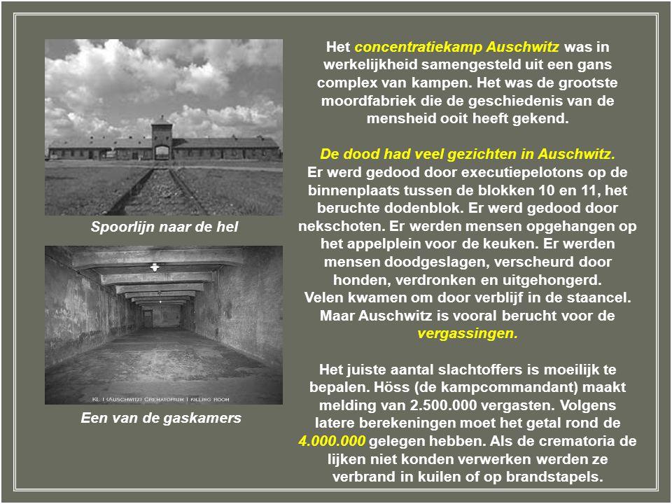 Het concentratiekamp Auschwitz was in werkelijkheid samengesteld uit een gans complex van kampen. Het was de grootste moordfabriek die de geschiedenis van de mensheid ooit heeft gekend.
