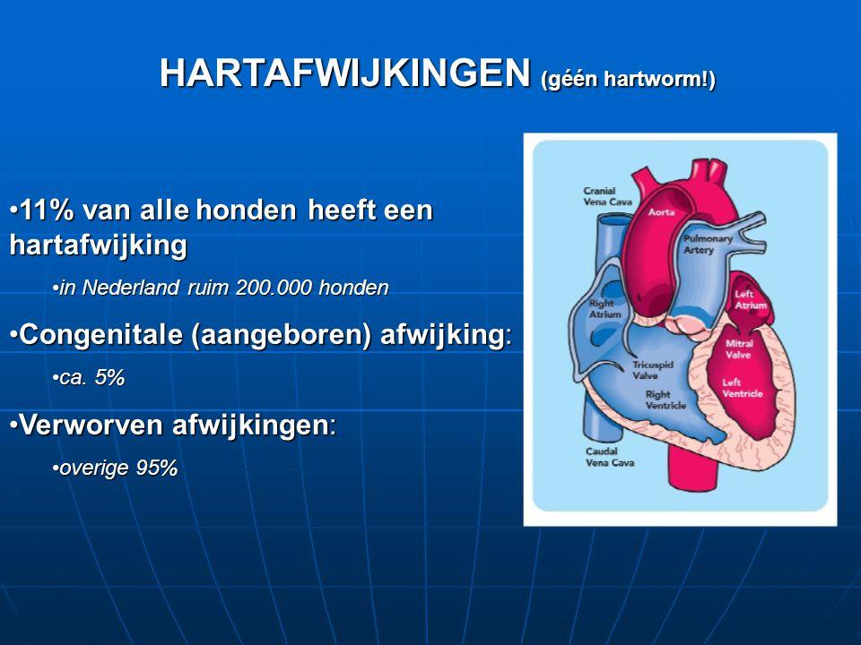 HARTAFWIJKINGEN (géén hartworm!)