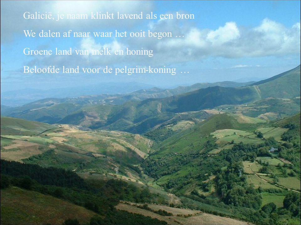 Galicië, je naam klinkt lavend als een bron