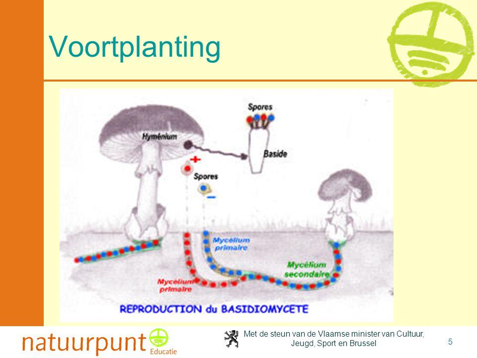 2-4-2017 Voortplanting