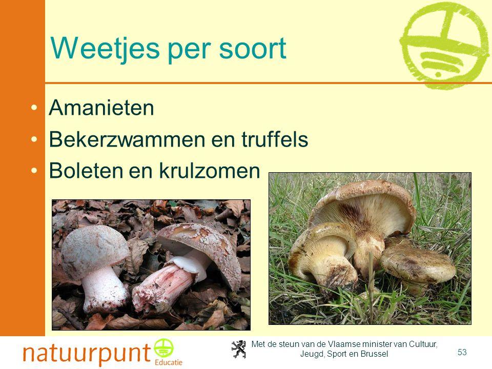 Weetjes per soort Amanieten Bekerzwammen en truffels