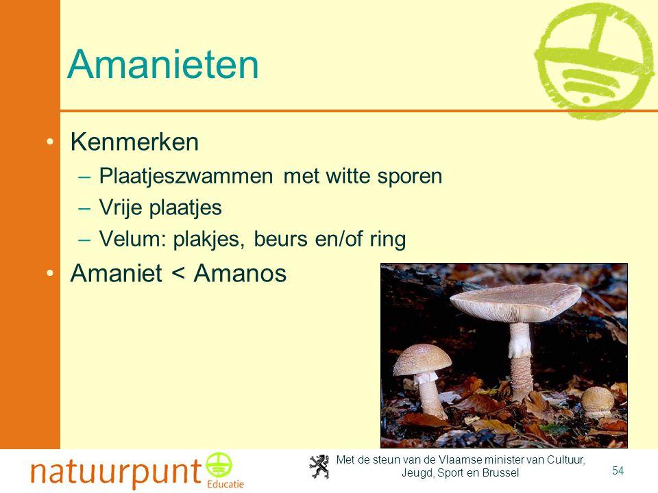 Amanieten Kenmerken Amaniet < Amanos