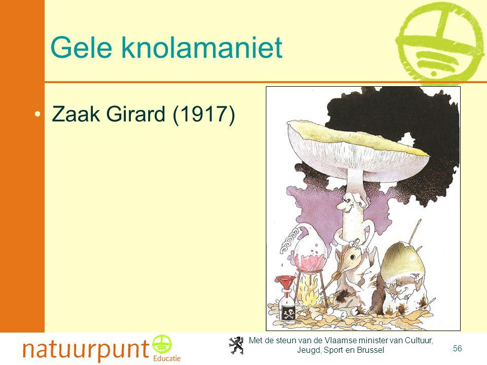 2-4-2017 Gele knolamaniet Zaak Girard (1917)