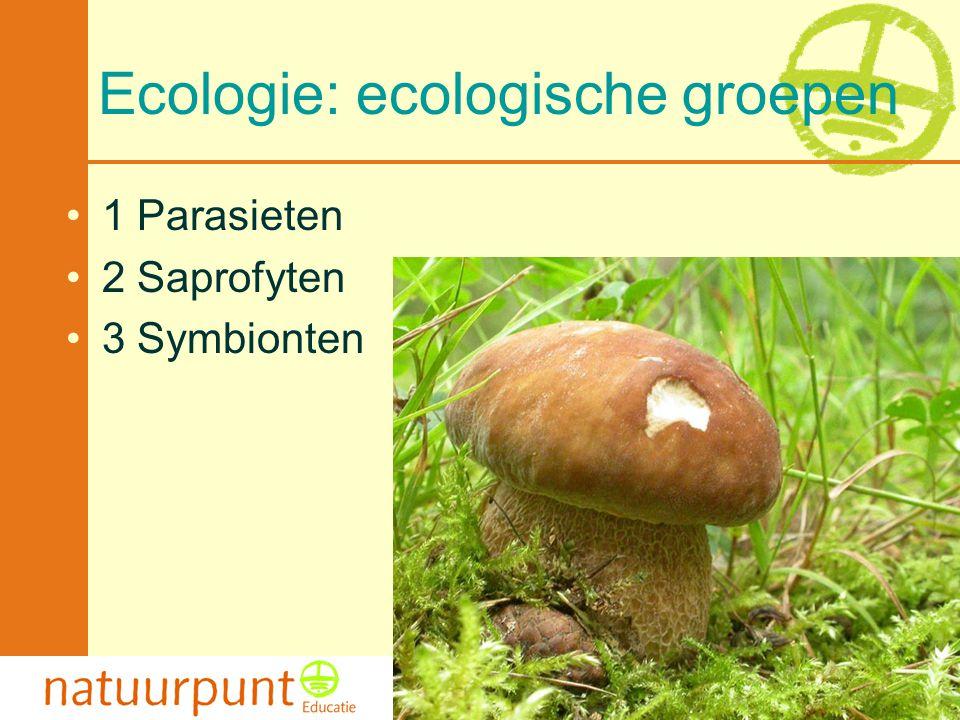 Ecologie: ecologische groepen