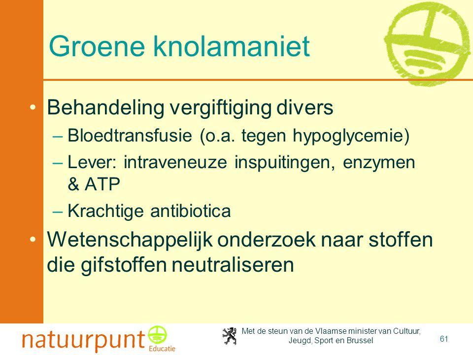 Groene knolamaniet Behandeling vergiftiging divers