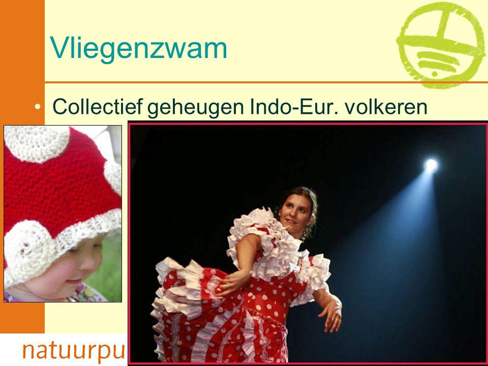 2-4-2017 Vliegenzwam Collectief geheugen Indo-Eur. volkeren