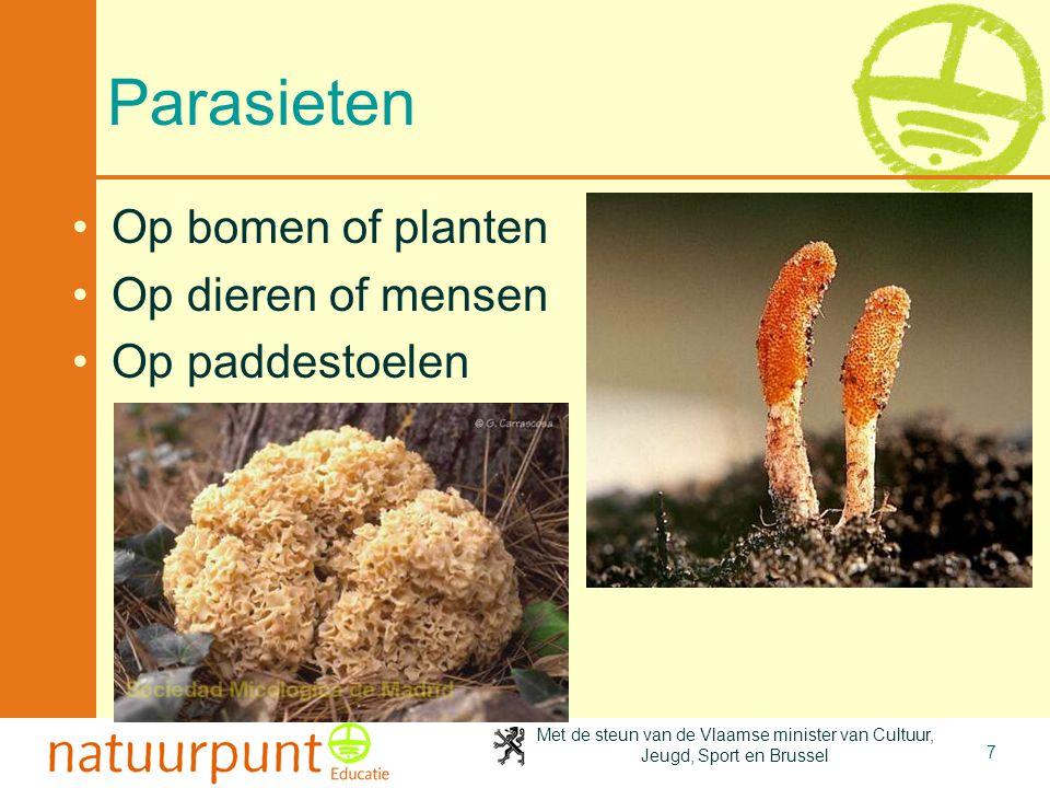 Parasieten Op bomen of planten Op dieren of mensen Op paddestoelen
