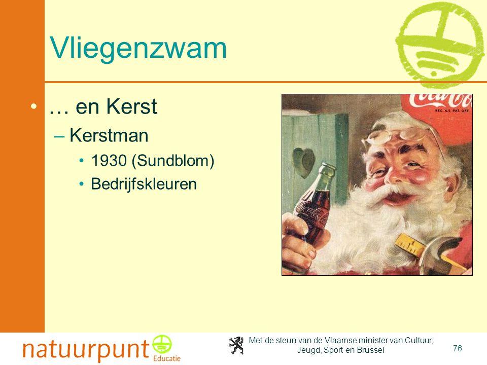 Vliegenzwam … en Kerst Kerstman 1930 (Sundblom) Bedrijfskleuren
