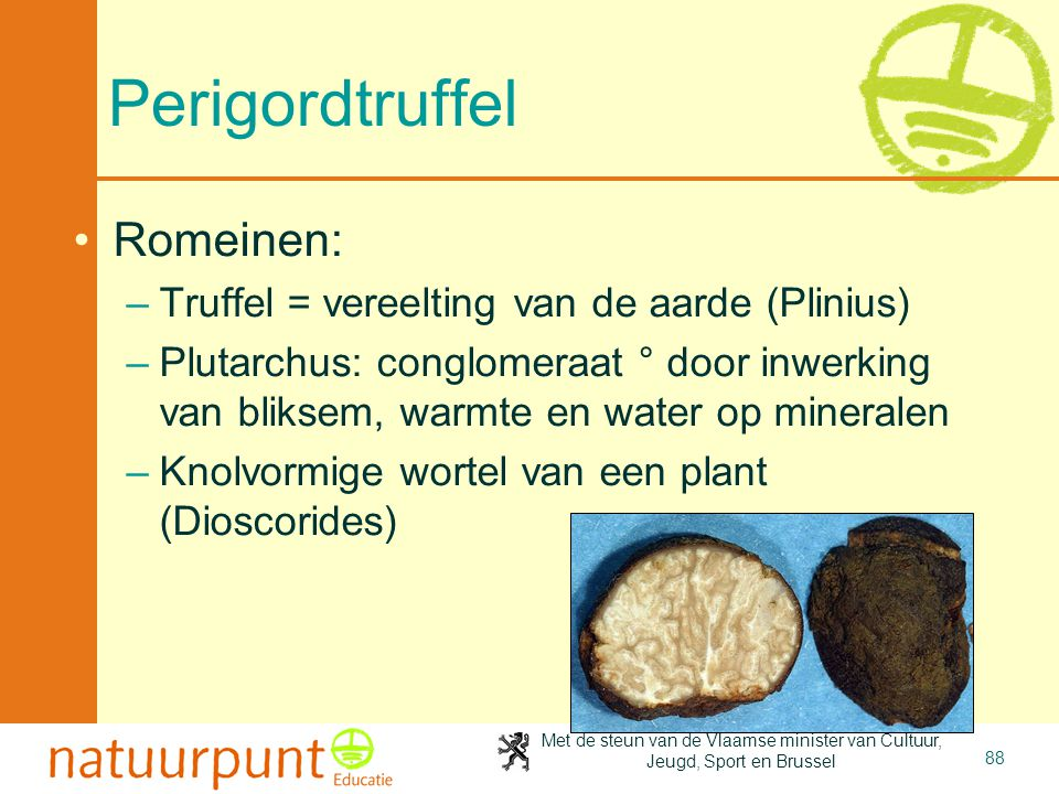Perigordtruffel Romeinen: Truffel = vereelting van de aarde (Plinius)