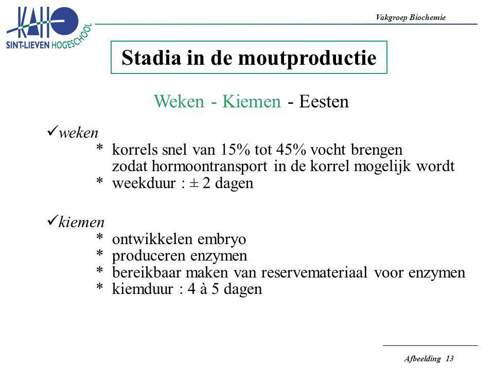 Stadia in de moutproductie