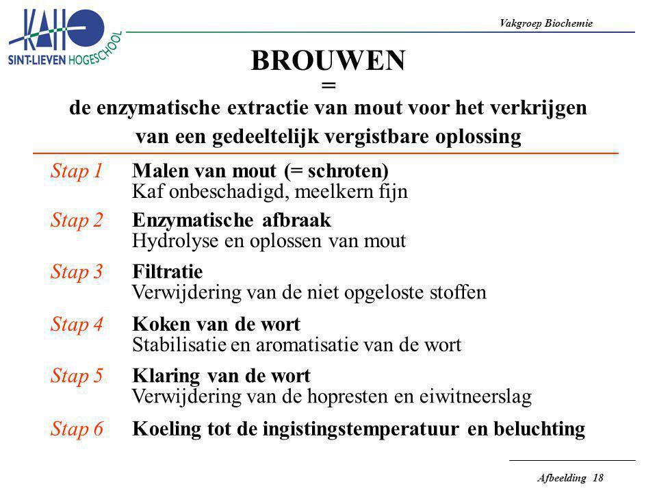 BROUWEN = de enzymatische extractie van mout voor het verkrijgen
