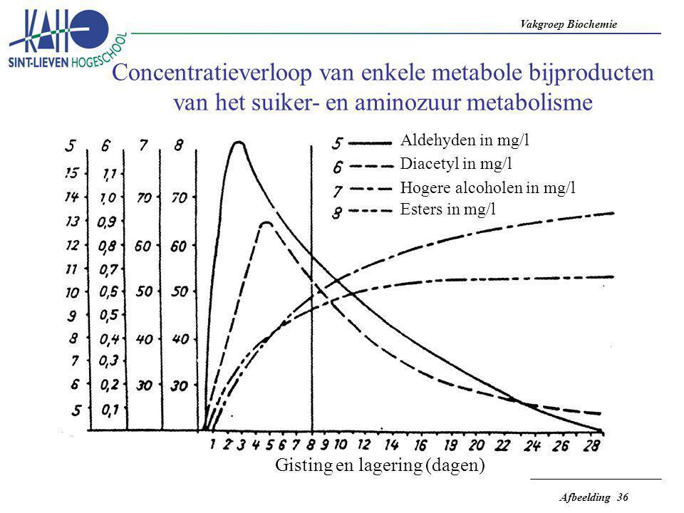 Concentratieverloop van enkele metabole bijproducten van het suiker- en aminozuur metabolisme