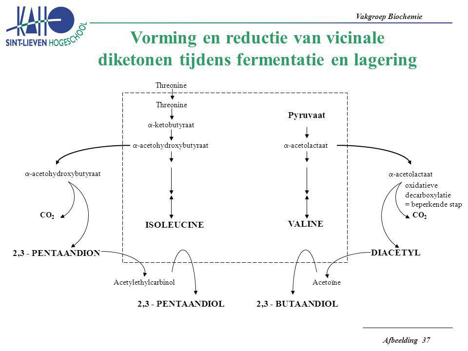 Vorming en reductie van vicinale diketonen tijdens fermentatie en lagering