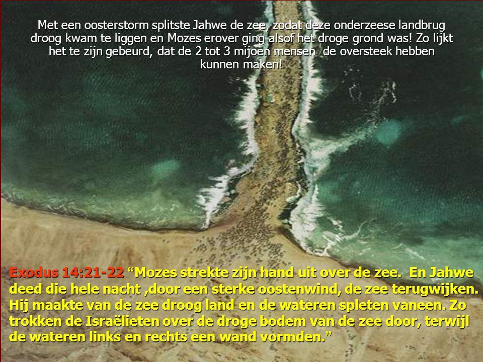 Met een oosterstorm splitste Jahwe de zee, zodat deze onderzeese landbrug droog kwam te liggen en Mozes erover ging alsof het droge grond was! Zo lijkt het te zijn gebeurd, dat de 2 tot 3 mijoen mensen de oversteek hebben kunnen maken!