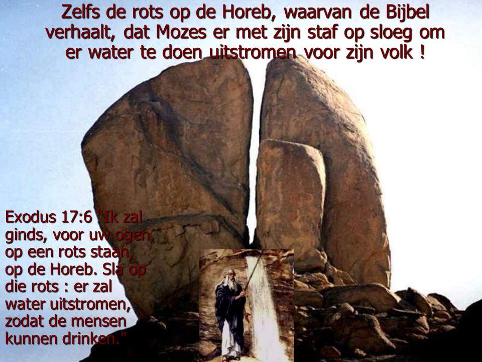 Zelfs de rots op de Horeb, waarvan de Bijbel verhaalt, dat Mozes er met zijn staf op sloeg om er water te doen uitstromen voor zijn volk !