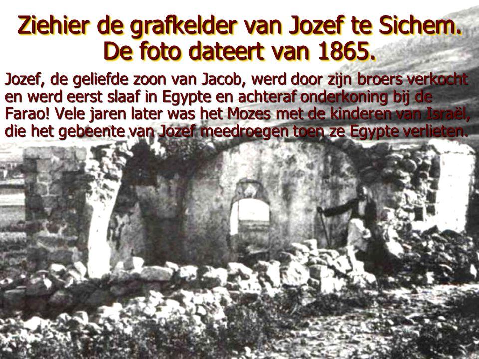 Ziehier de grafkelder van Jozef te Sichem. De foto dateert van 1865.