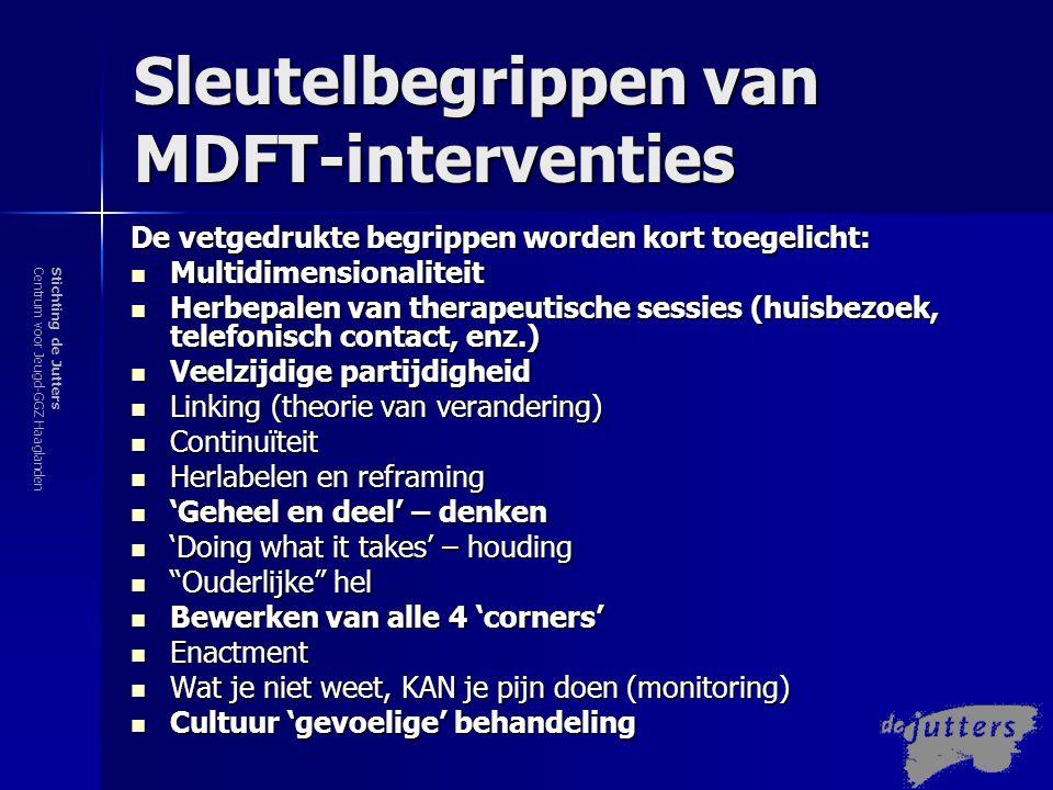 Sleutelbegrippen van MDFT-interventies