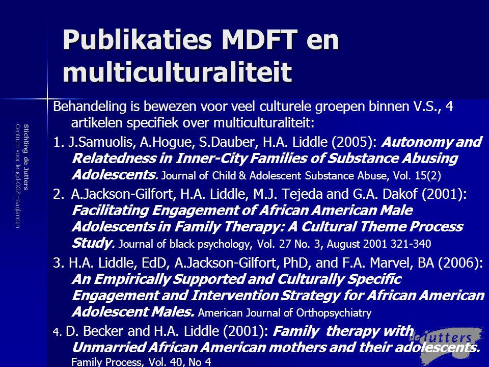 Publikaties MDFT en multiculturaliteit